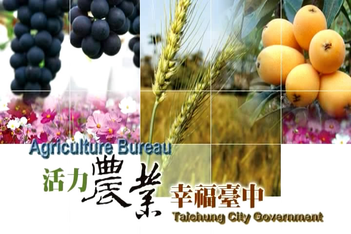 A Brief Introduction to Agriculture of Taichung